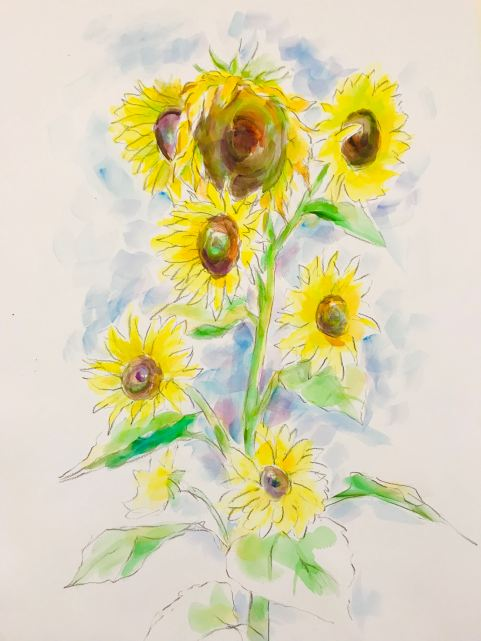 Sunflowers2019